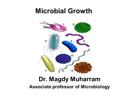 Dr. Magdy Muharram Associate professor of Microbiology Microbial Growth.