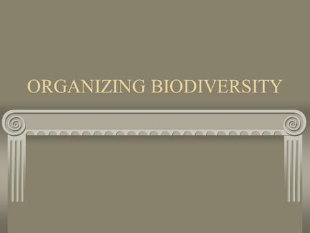 ORGANIZING BIODIVERSITY. A SPECIES How do we define a species? A reproductive population that occupies a specific niche (plays a role) in nature Individuals.