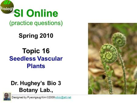 Designed by Pyeongsug Kim ©2009 SI Online (practice questions) Spring 2010 Topic 16 Seedless Vascular Plants Dr. Hughey's Bio.