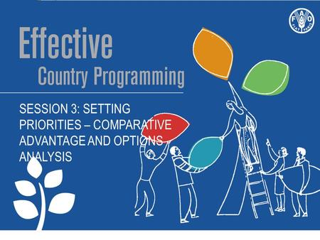 SESSION 3: SETTING PRIORITIES – COMPARATIVE ADVANTAGE AND OPTIONS ANALYSIS.