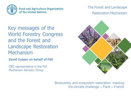 David Cooper on behalf of FAO CBD representative in the FLR Mechanism Advisory Group Key messages of the World Forestry Congress and the Forest and Landscape.