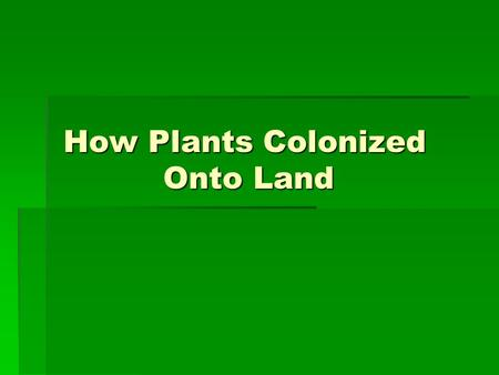 How Plants Colonized Onto Land. First Sign of a Plant  The first plant was a form of green algae called Charophyceans.  Molecular homologies present.