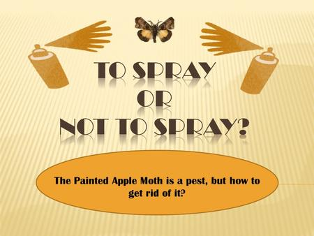 The Painted Apple Moth is a pest, but how to get rid of it?