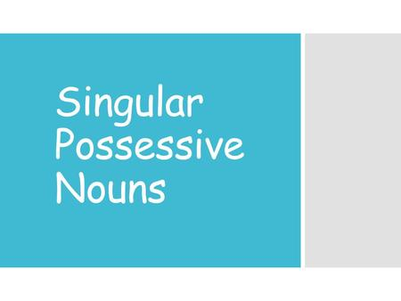 Singular Possessive Nouns What are nouns? A noun is a part of speech that describes a person, animal, place, or thing.