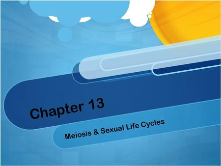 Chapter 13 Meiosis & Sexual Life Cycles. 13.1 Offspring acquire genes from parents by inheriting chromosomes Genes Segments of DNA that code for heredity.