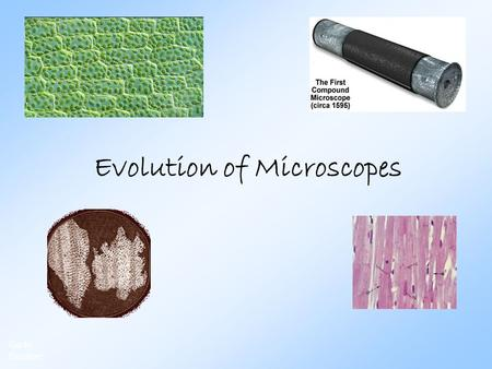 Evolution of Microscopes Go to Section:. Janssens 1590: Hans & Zacharias Janssen: invented compound light microscope Slide # 2 Go to Section: