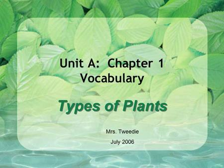 Unit A: Chapter 1 Vocabulary Types of Plants Mrs. Tweedie July 2006.