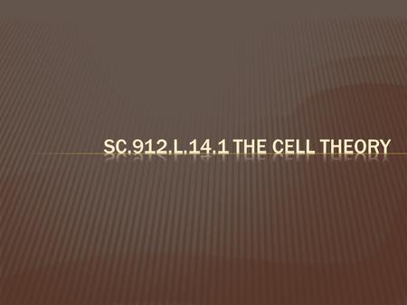 SC.912.L.14.1 The Cell Theory.