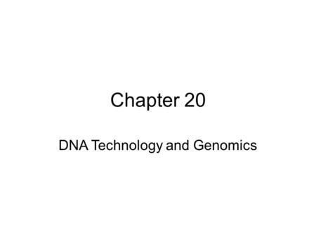Chapter 20 DNA Technology and Genomics. Biotechnology is the manipulation of organisms or their components to make useful products. Recombinant DNA is.