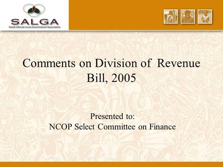 Comments on Division of Revenue Bill, 2005 Presented to: NCOP Select Committee on Finance.