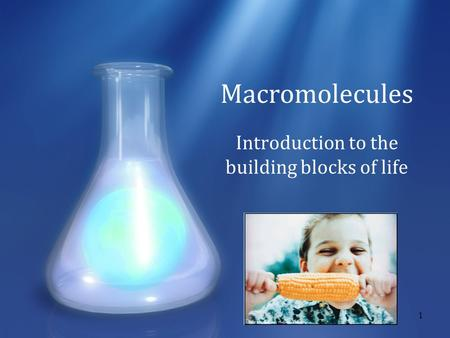 1 Macromolecules Introduction to the building blocks of life.