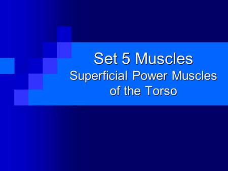 Set 5 Muscles Superficial Power Muscles of the Torso.
