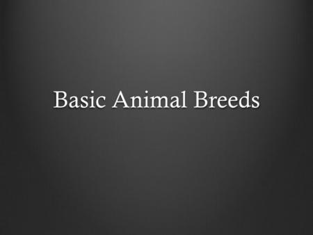 Basic Animal Breeds. Objectives To be able to explain basic livestock breeds by their characteristics.
