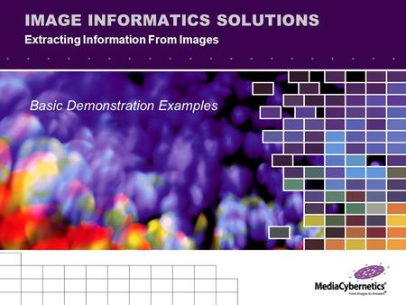 IMAGE INFORMATICS SOLUTIONS Extracting Information From Images Basic Demonstration Examples.
