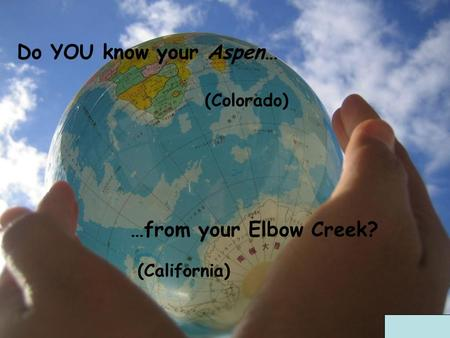 Do YOU know your Aspen… (Colorado) (California) …from your Elbow Creek?
