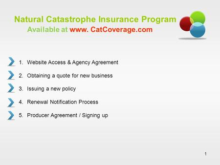 1 Natural Catastrophe Insurance Program 1.Website Access & Agency Agreement 2.Obtaining a quote for new business 3.Issuing a new policy 4.Renewal Notification.