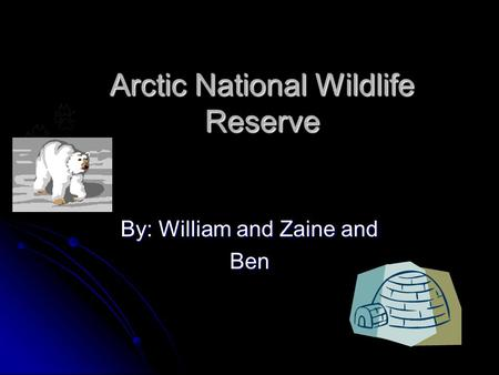 Arctic National Wildlife Reserve By: William and Zaine and Ben.