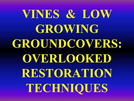 VINES & LOW GROWING GROUNDCOVERS: OVERLOOKED RESTORATION TECHNIQUES.