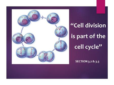 """Cell division is part of the cell cycle"" SECTION 3.2 & 3.3."