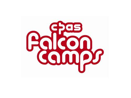 Fun-packed holidays for all About 500 children and young people enjoy a holiday with Falcon Camps each year.