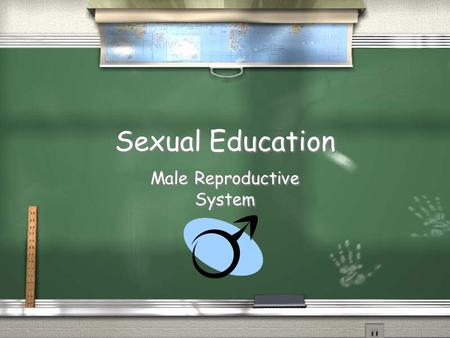 Sexual Education Male Reproductive System. Hormones / Testosterone / The male hormone that causes the testes to produce sperm / Testosterone / The male.