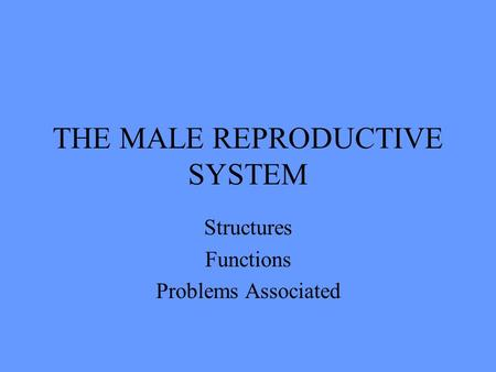THE MALE REPRODUCTIVE SYSTEM Structures Functions Problems Associated.