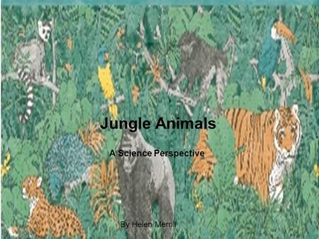 Jungle Animals A Science Perspective By Helen Merrill.