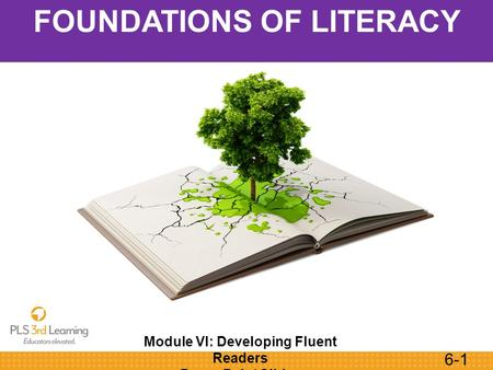 6-1 Module VI: Developing Fluent Readers PowerPoint Slides FOUNDATIONS OF LITERACY.