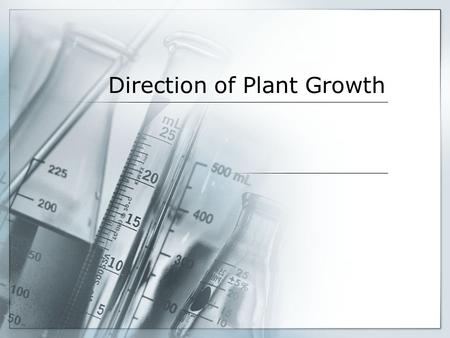 Direction of Plant Growth. Statement of the Problem Does the way seeds are planted affect their growth?