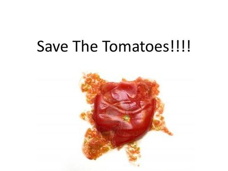 Save The Tomatoes!!!!. Project Goal: Use the materials provided to create a shelter to protect the tomatoes from being smashed.