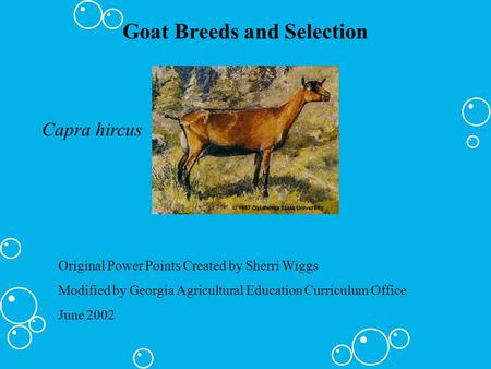 Goat Breeds and Selection Capra hircus Original Power Points Created by Sherri Wiggs Modified by Georgia Agricultural Education Curriculum Office June.