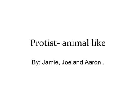 Protist- animal like By: Jamie, Joe and Aaron.. Principal characteristics The prostists are classified by the type of locomotion. Also by criteria such.