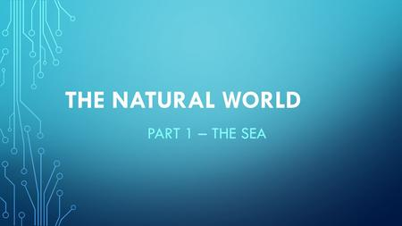 THE NATURAL WORLD PART 1 – THE SEA. There are many natural wonders that lay beneath the waters surrounding the UAE. Some are yet to be discovered, some.