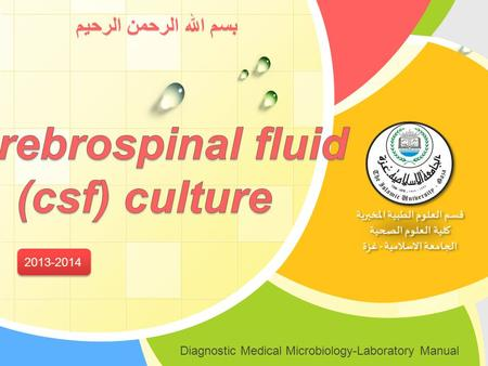 Cerebrospinal fluid (csf) culture