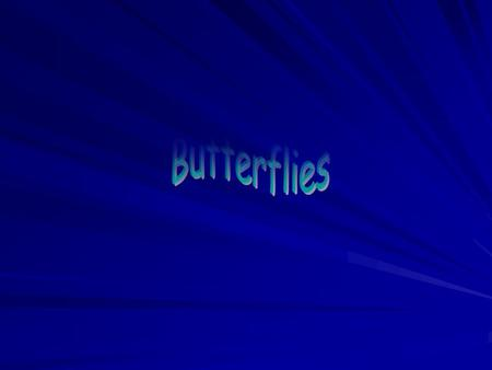 What are butterflies?? Butterflies are beautiful, flying insects with large scaly wings. Like all insects, they have six jointed legs, 3 body parts, a.