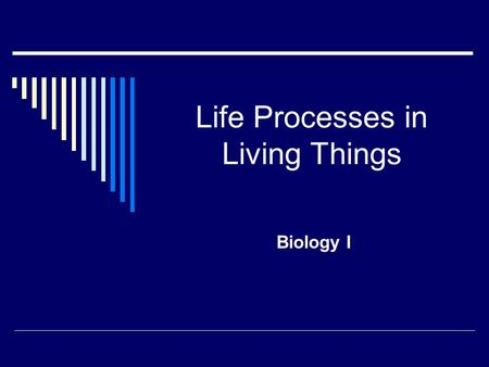 Life Processes in Living Things Biology I. Transport  How does the organism move needed substances into & out of cells? Plants  Xylem: moves water &
