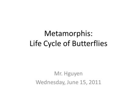 Metamorphis: Life Cycle of Butterflies Mr. Hguyen Wednesday, June 15, 2011.
