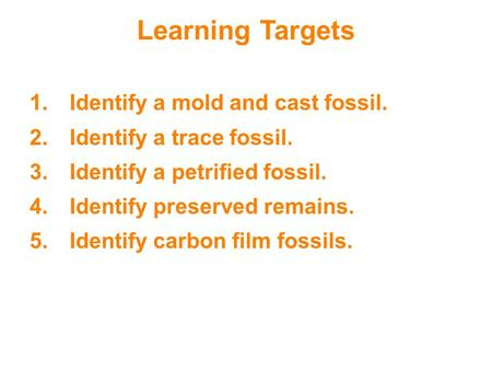 Learning Targets 1.Identify a mold and cast fossil. 2.Identify a trace fossil. 3.Identify a petrified fossil. 4.Identify preserved remains. 5.Identify.