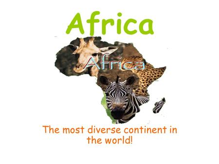 The most diverse continent in the world!
