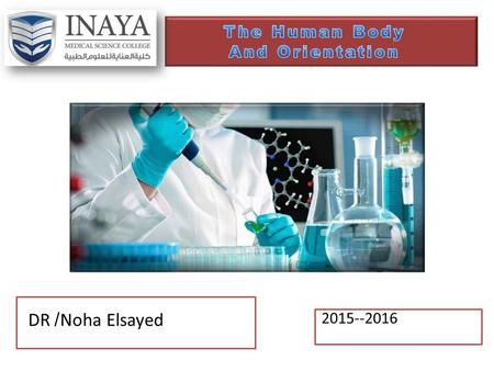 2015--2016 DR /Noha Elsayed. Course outline 1.Learning outcome 2.The Human Body&Orientation.