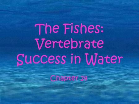 The Fishes: Vertebrate Success in Water Chapter 18 The Fishes: Vertebrate Success in Water Chapter 24.