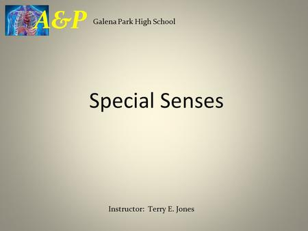 Special Senses Galena Park High School A&P Instructor: Terry E. Jones.