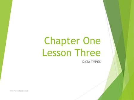 Chapter One Lesson Three DATA TYPES © www.waxkabaro.com.