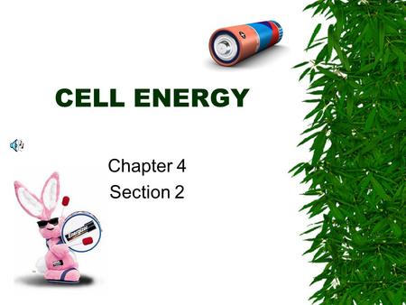 CELL ENERGY Chapter 4 Section 2 Cells need energy …  To live  To grow  To reproduce.