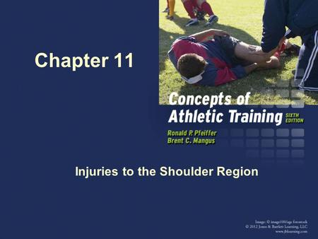 Chapter 11 Injuries to the Shoulder Region. Anatomy Review Bones: Clavicle and Scapula Shoulder girdle humerus. Humerus Shoulder joints: Glenohumeral.