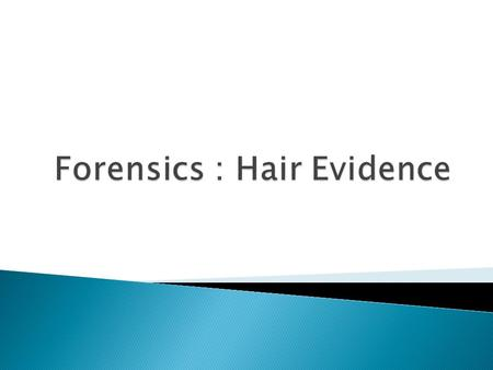  One of the most common evidence is hair evidence.  Helpful in demonstrating physical contact with a suspect  Until recently, the comparison microscope.
