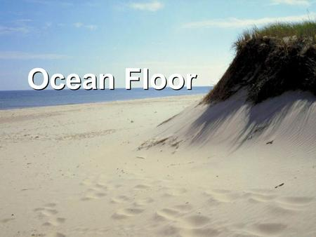 Ocean Floor. The ocean basins are characterized by recognizable geologic/topographic features. While the size of each feature may change within the.