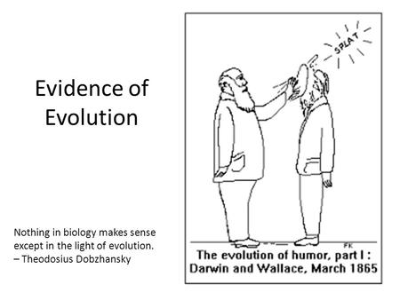 Evidence of Evolution Nothing in biology makes sense except in the light of evolution. – Theodosius Dobzhansky.