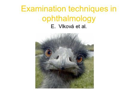 Examination techniques in ophthalmology E. Vlková et al.