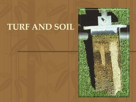 TURF AND SOIL. SOIL PROFILE Topgrowth (leaves and stolons) Thatch: undecomposed organic matter (roots, shoots, stolons, rhizomes) –Decomposed by microorganisms.